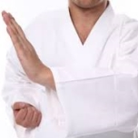 Karate Shito Ryu
