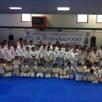 Karate del Full Dance